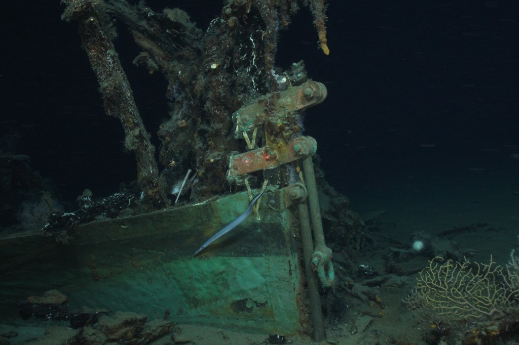 The bow of the Green Lantern Wreck showing the copper sheathing, draft marks, and bobstay fasteners. Image courtesy of Rob Church using Aquapix camera, Lophelia II 2009: Deepwater Coral Expedition: Reefs, Rigs and Wrecks.